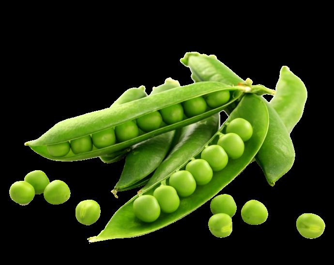 Овощи Зеленый горошек